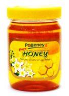 Polleney Brand Pure Honey - 454 gm